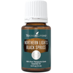 Young Living Northern Lights Black Spruce Essential Oil