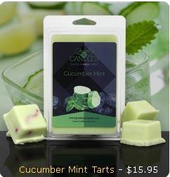 Cucumber Mint Wax Tarts