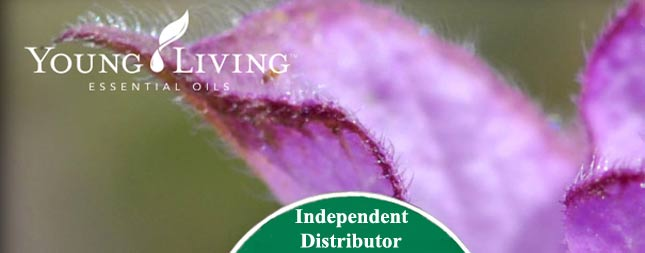 Young Living Essential oils header